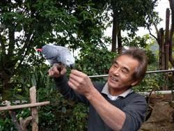 工人李明和以廢棄物美化家園寵物野生動物一家親