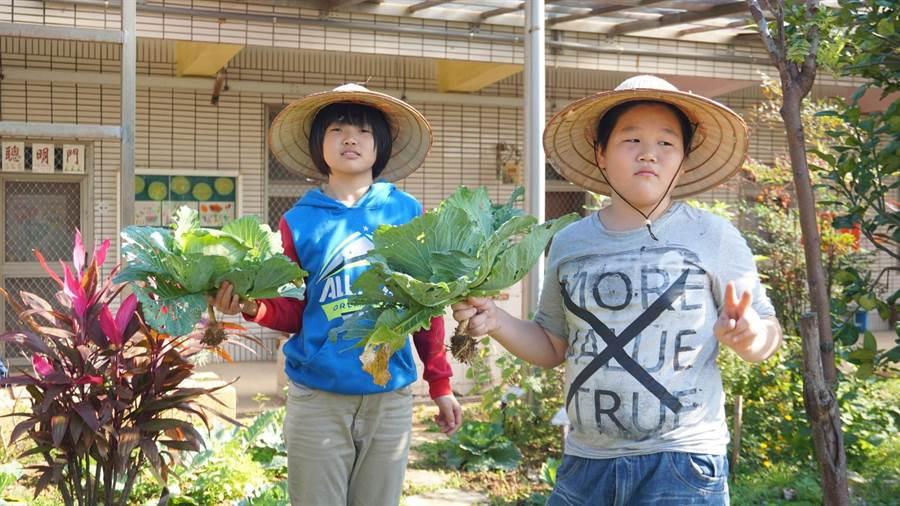 育仁國小推行食農教育,讓小朋友採摘農場內的蔬菜包水餃。(校方提供)