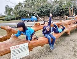 百年櫸木變座椅,林後四林森林園區添大型藝術