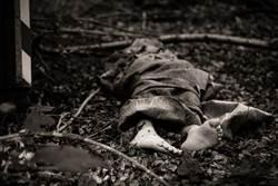 生殖器遭切除、齒拔光!這國爆連續血腥幼童謀殺案