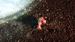 影》慎入! 少年玩煙火炸斷手掌 血肉四散螞蟻圍繞啃食