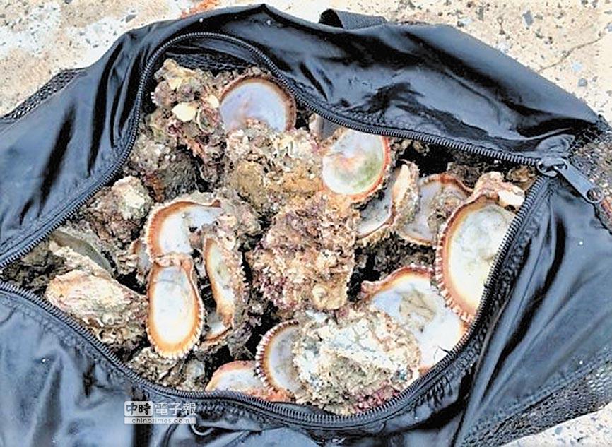 澎湖縣環保案件聯合緝小組獲採捕保育類「山羊海菊蛤」。(陳可文翻攝)