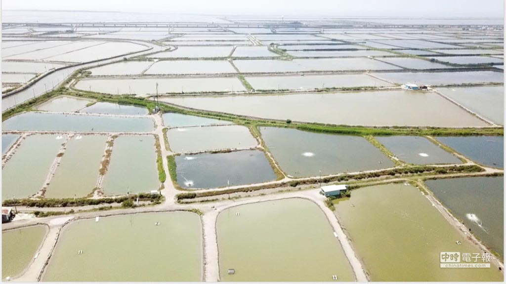 目前RE100組織已獲得世界百位大龍頭加入,承諾在2020年前100%使用再生能源,顯示RE100的影響力將擴及國際產業鏈,台灣為其中環節之一,需要跟緊腳步、進而領先,未來透過「漁電共生」模式將可加速台灣綠能產業發展。圖/臺鹽綠能提供