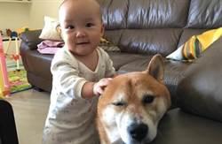 Youtuber專訪(上)/女嬰與狗的互動萌翻網友 影片爆紅到泰國
