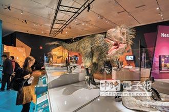 陸考古發現 恐龍演化成鳥新證據