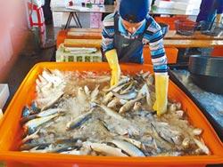 年節需求旺 陸大掃台漁貨