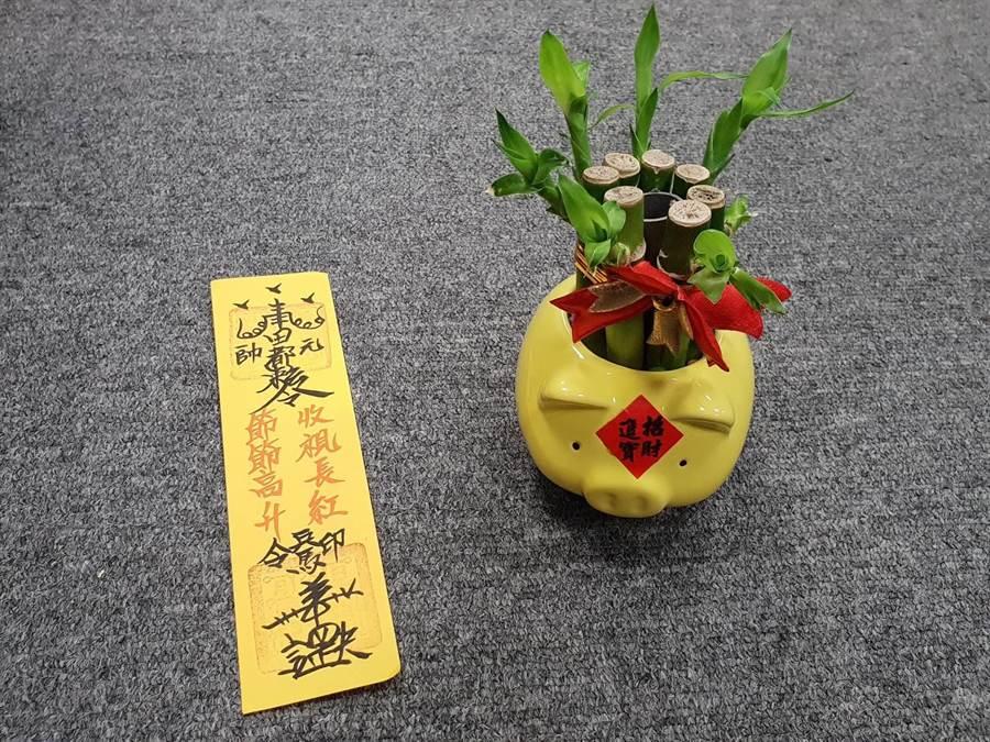 利用簡易的小盆栽,種植開運竹、招財樹、金錢草或番薯葉等,就可以開運招財。(攝影/游定剛)