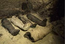 2千年古墓曝光!50具埃及木乃伊…有人也有動物