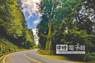 3公路探祕 賞櫻賞螢賞山景
