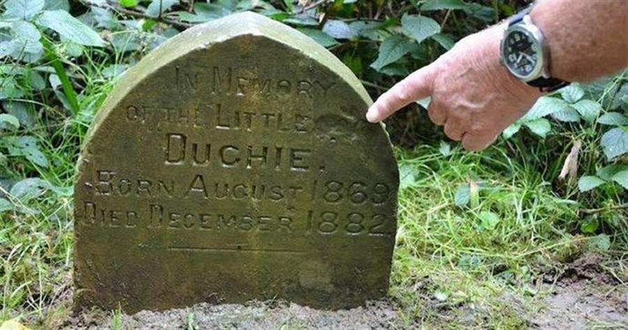 原來這是一塊130年前主人為寵物兔立下的墓碑(圖/翻攝自臉書/Sid Saunders)