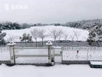 上海迎來豬年第一場雪 北部地方出現大到暴雪