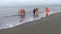 男女受困沙洲 海巡人員迅速救人