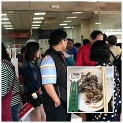旗津烤鳳螺一盤賣500元? 韓國瑜強硬回應