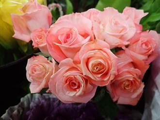 情人節將屆!玫瑰訴浪漫 花語傳心意更有情