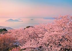 春遊瀨戶內海 島群觀古藝 香川賞粉櫻