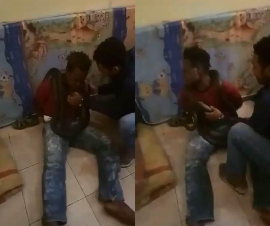 印尼警察出奇招?「巨蛇逼供」小偷崩潰全招了(圖/翻攝自影片)