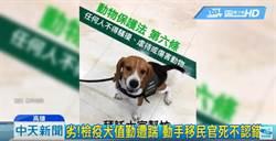 檢疫犬遭踹!移民署官員嗆「我不喜歡狗」 影片引網公憤