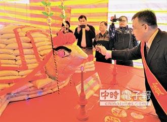 澎湖慶元宵 3000台斤大米龜點睛開光