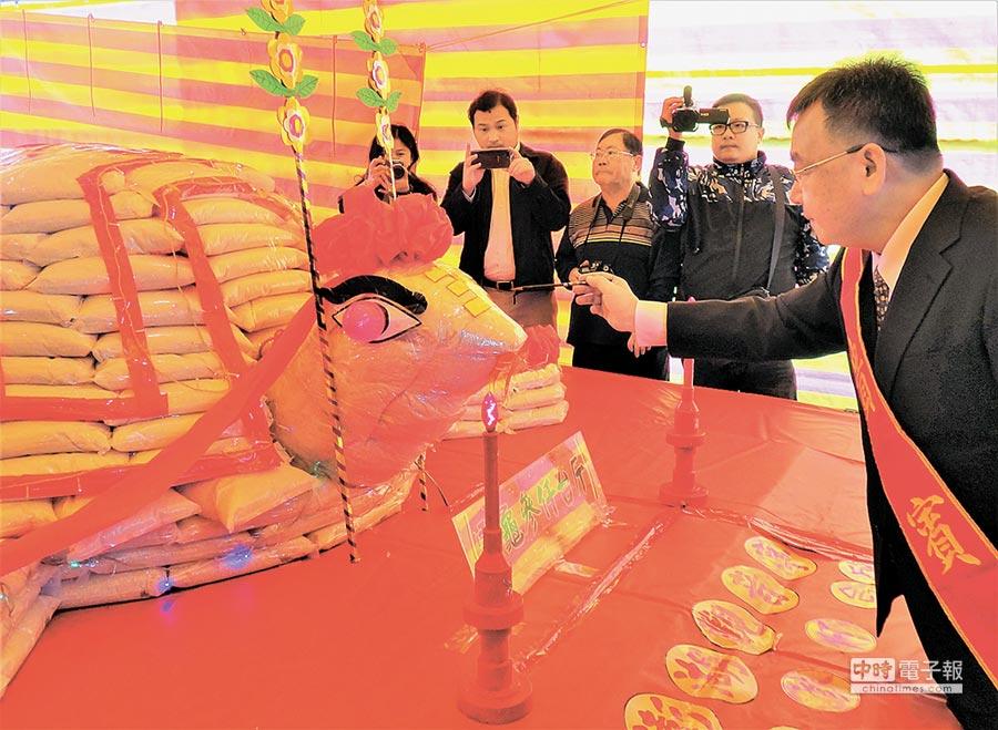 澎湖元宵節乞龜活動開鑼,縣長賴峰偉為百年古蹟觀音亭大米龜開光點睛。(陳可文攝)