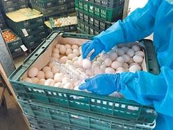 芬普尼殘留超標!毒蛋再現 46萬顆大過年吃下肚