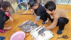 鳥嶼國小以章魚設計特色課程  獲教學卓越金質獎