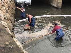 金門山外溪漂油汙 民眾憂心汙染水質