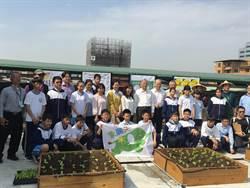 「象農夫」在台北市學校推動綠屋頂栽種農作物