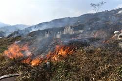 南投魚池鄉12號公墓火警 焚燒面積20餘公頃