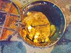 花蓮汙水下水道 噁變餿水道