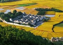 中共中央一號文件 三農問題仍具重要政治意涵