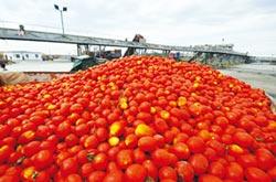 美逼歐盟農產品入貿易談判