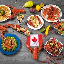 加拿大食尚月龍蝦牛排爽爽吃