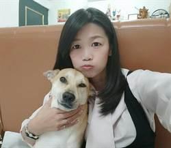 網站認養米克斯   美甲師讓狗留在台灣