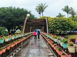 和平廣場綠美化作業完成 為市區增添另一盛景