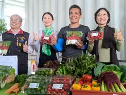 堅持有機蔬菜給學子 花蓮青農「天然綠籬」檔蟲害