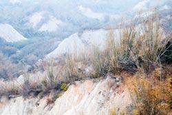 龍崎自然地景 總統力推國際觀光