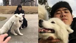 最慘單身狗!與正妹相親失敗 卻意外幫愛犬脫單