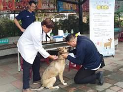 愛護毛小孩健康 中市3月狂犬疫苗及晶片巡迴注射開跑