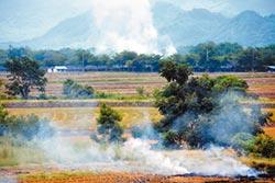 燒稻草被查獲2次 隔年不收購公糧