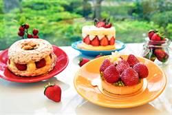天成大飯店TICC世貿會館Taipei Garden Cafe,愛戀繽紛草莓季