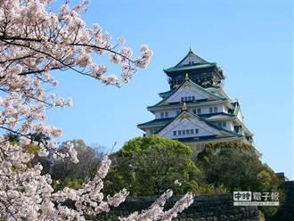 春季赴日本賞櫻夯 今年團費恐貴1到4千