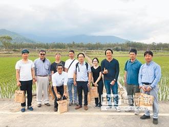 池上米青農導入區塊鏈 日人取經