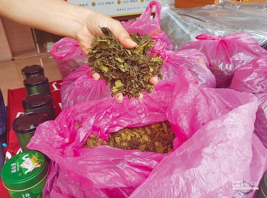 「恰特草」剛採下新鮮時外形類似莧菜,曬乾後形似茶葉,含興奮化學物質卡西酮,盛行於歐美、紐澳,很多國家都將它列作管制藥物或毒品。(本報資料照片)