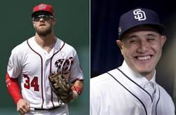 MLB》哈波、馬恰多值得23年6.3億美元?