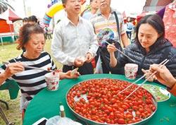 台塑輔導種植 麥寮小番茄打名號