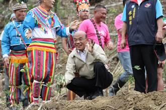 蘇貞昌台東植樹 笑稱:不能讓地球禿頭