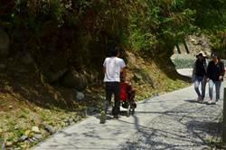 輪椅族也能輕鬆漫遊 太魯閣白楊步道獲友善環境特別獎