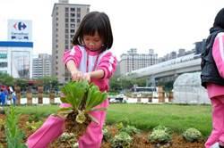 學童參與「可食地景」!收成蔬菜助公益!健康也樂活