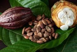 不只減醣!專家揭「這2樣」能改善脂肪肝