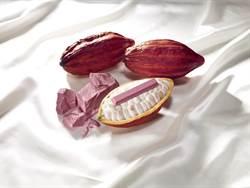 世界第四種巧克力  紅寶石巧克力問世
